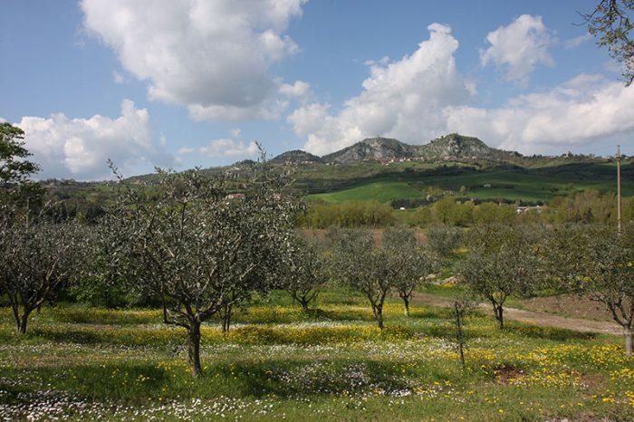 valle-del-marecchia-3