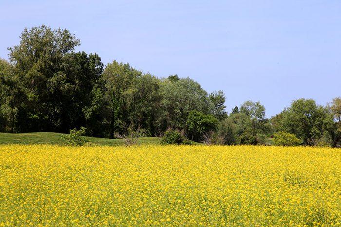 valle-del-marecchia-6